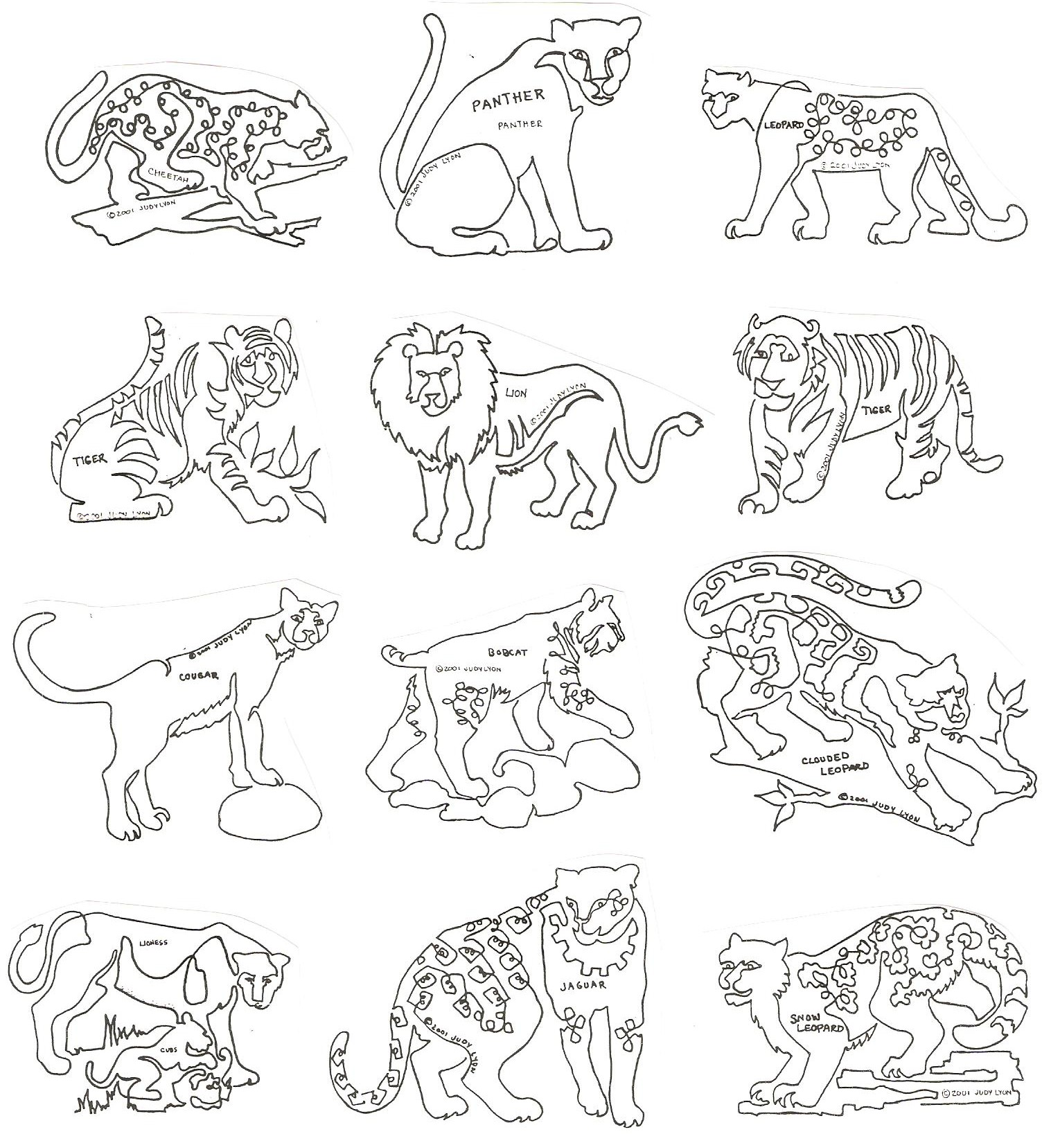 Big Cats Block - ACCB - Collection of 12