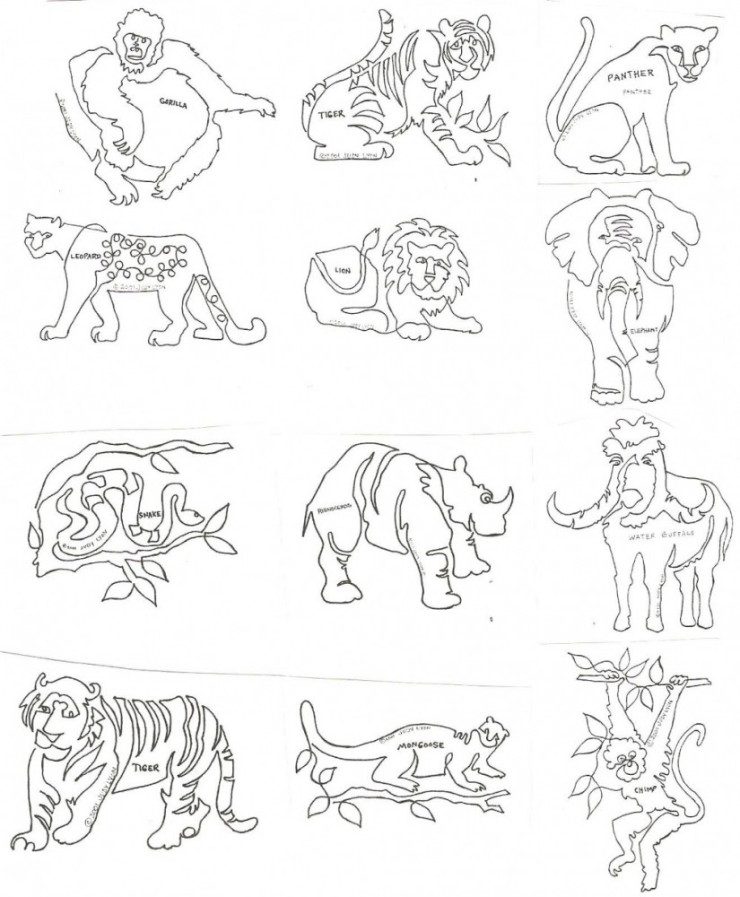 Jungle Block - JB - Collection of 12