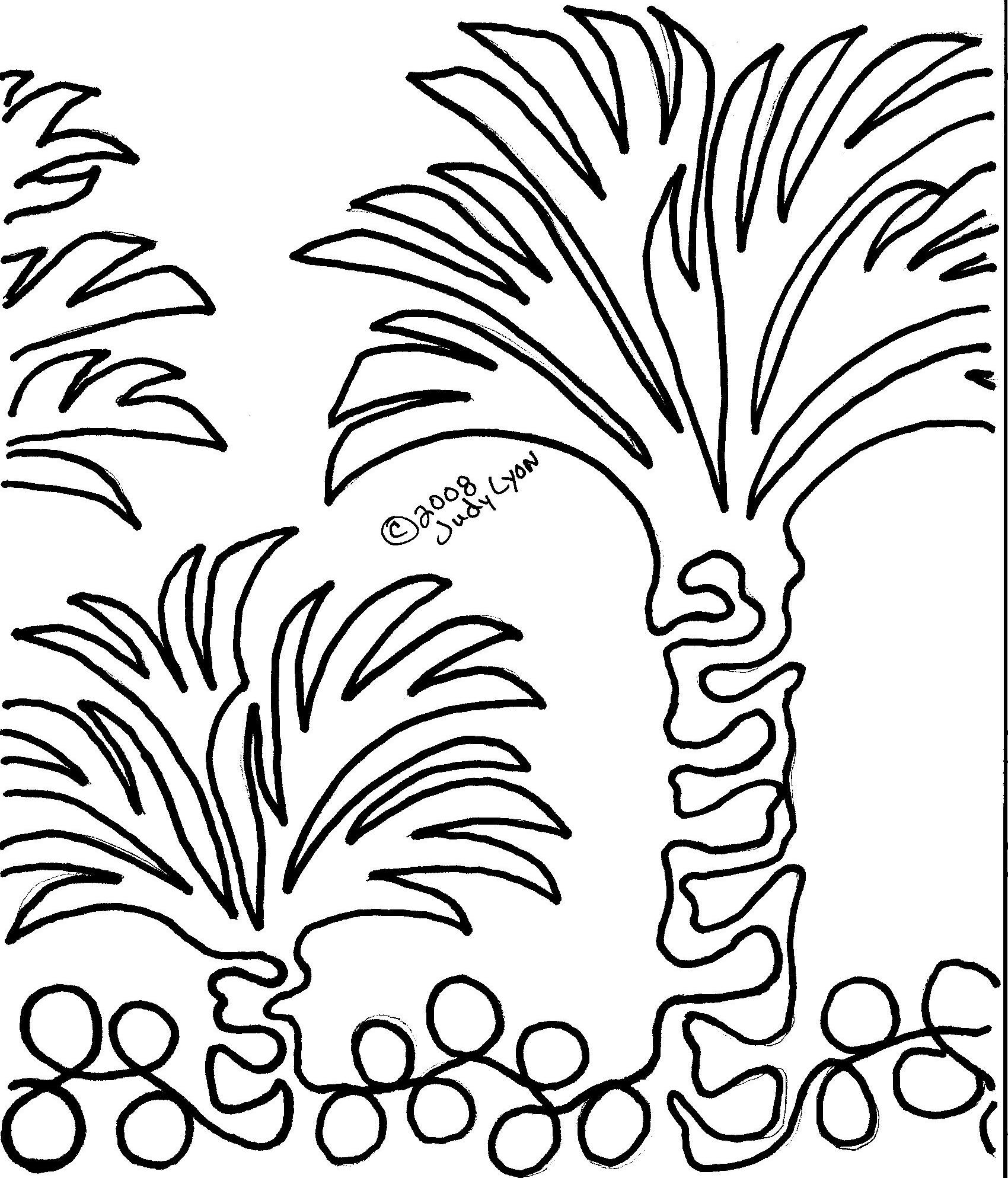 Palm Trees - Border