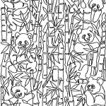Panda Bamboo - Layout Example
