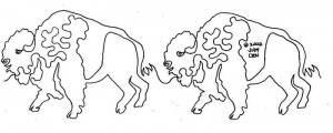 Great Plains - Bison