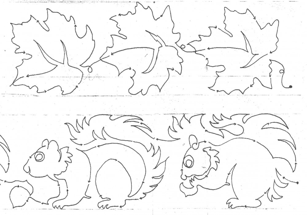 Maple Squirrels