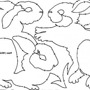 Cottontails snippet